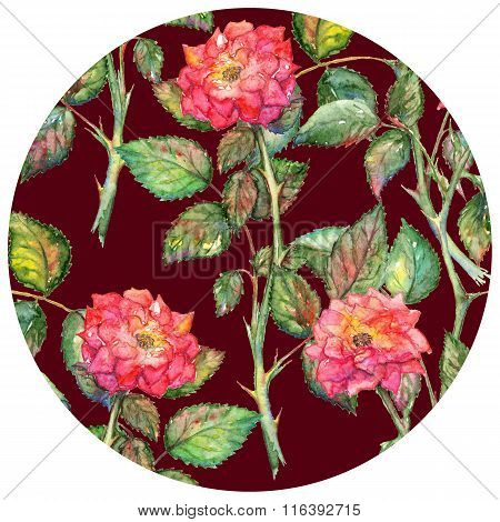 Watercolor Pink Roses Circle Pattern Texture Background