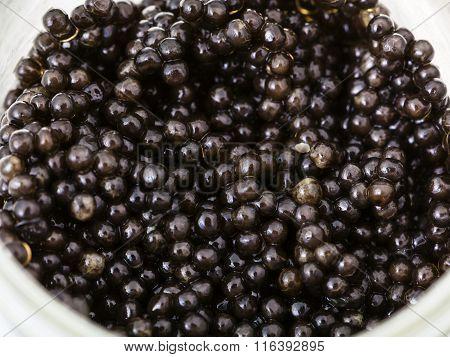 Many Black Sturgeon Caviar In Glass Jar