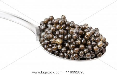 Spoon With Black Sturgeon Caviar Isolated On White
