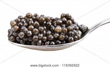 Side View Of Spoon With Black Sturgeon Caviar