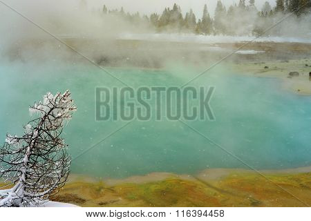 Winter Snowing Geothermal Pool Yellowstone