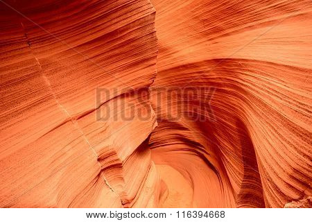 Rattlesnake Canyon Arizona