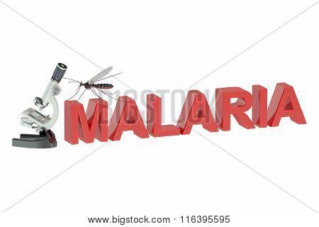 Malaria Concept