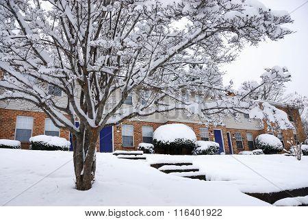 homet after snow