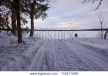 Snowmobile And Forest