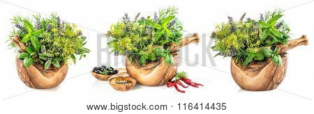 Olive Oil With Fresh Herbs And Spieces. Healthy Food Ingredients