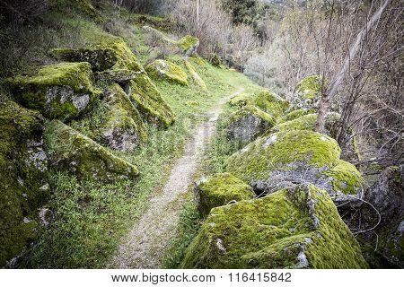 mountain path and stones with moss, Caminho dos Moleiros, Castelo Novo, Portugal