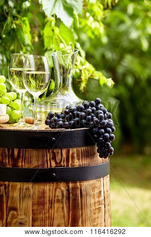 Bottle of white wine with wineglass and grapes in garden