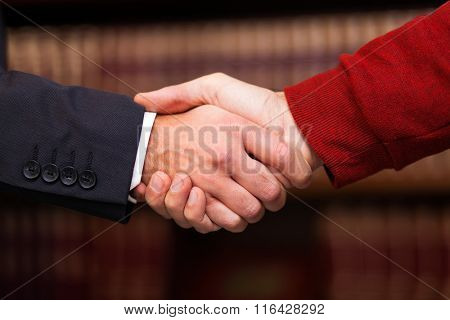 Businessman giving an handshake to a customer