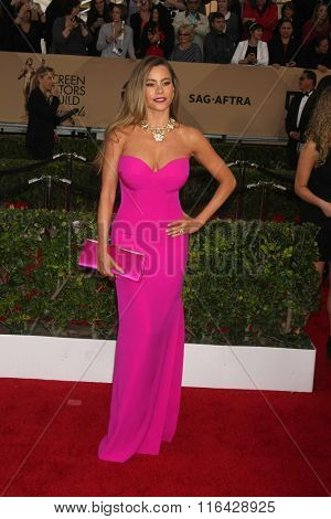LOS ANGELES - JAN 30:  Sofia Vergara at the 22nd Screen Actors Guild Awards at the Shrine Auditorium on January 30, 2016 in Los Angeles, CA