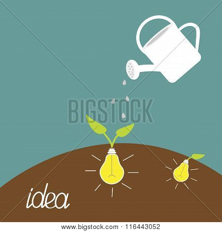 Watering Can And Lamp Bulb Plant. Growing Idea Concept.