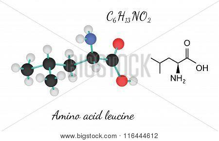 C6H13NO2 amino acid Leucine molecule