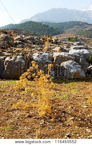 From The Hill  Asia Turkey  Ruins And Nature