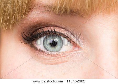 Grey Beautiful Eye With Make Up