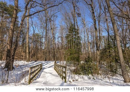Old Walking Bridge In The Woods Covered In Snow