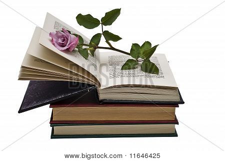 Livros.