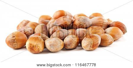 Pile of acorn nuts, isolated on white