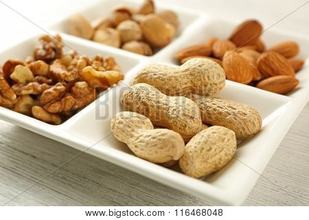 Walnut kernels, almonds, pistachios, peanuts in the ceramic rectangle plate, close-up