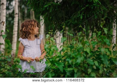 cute child girl walking in summer forest with birch trees. Nature exploration with kids.