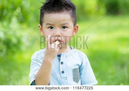Little boy eating finger food