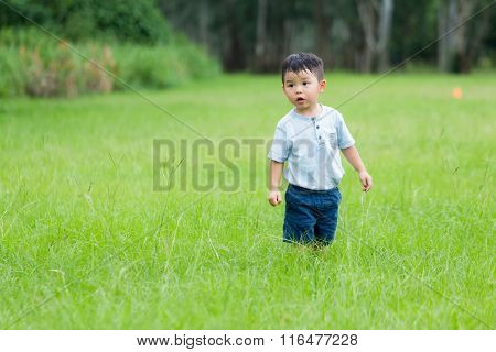 Little boy play hide and seek at park