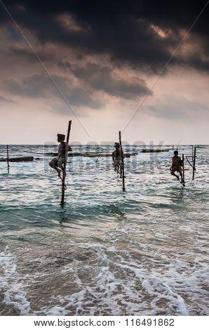 Ceylon fishing