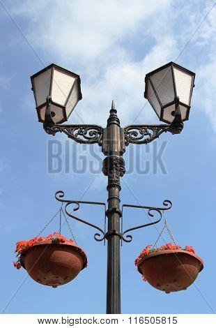 Lamp Lights, Flowers