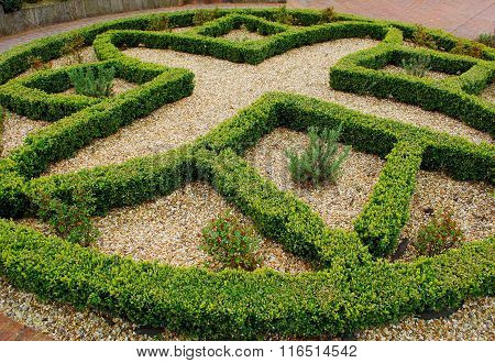 Beautiful formal garden