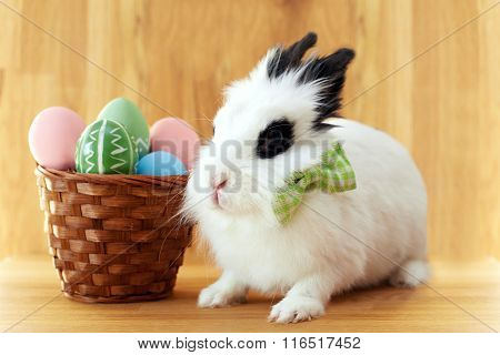 Fluffy White Rabbit With Easter Eggs Isolated On Wooden Background.