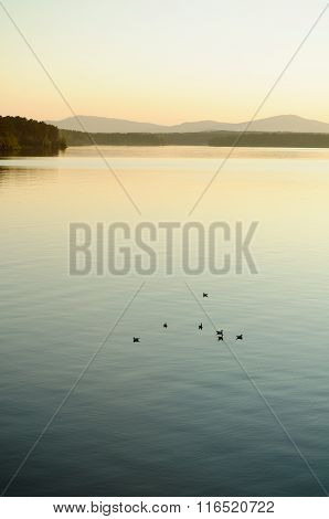 Irtyash Lake In Southern Urals, Russia - Summer Evening Landscape