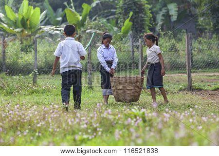 Children Picking Garbage In The School.