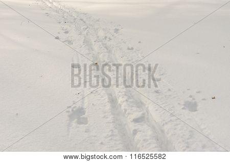 Deep ski-track on a fresh snow