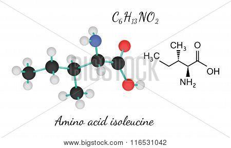 C6H13NO2 amino acid Isoleucine molecule