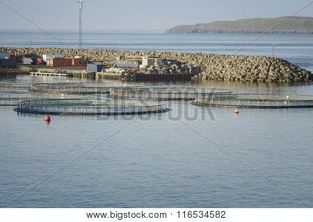 Fish farm in northern Norway
