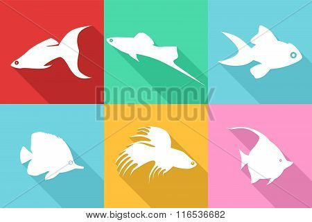Fishes Flat Design