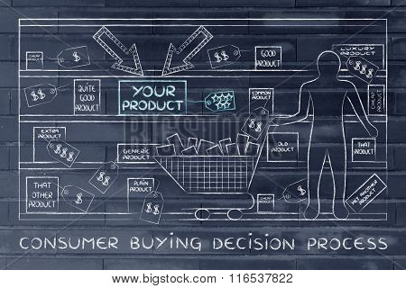 Person In A Store With Your Product Standing Out, Consumer Buying Decision Process