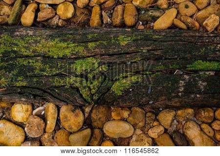 Wood Texture With Green Moss Stones Around