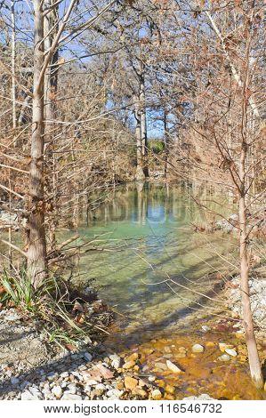 Small River At Hamilton Pool