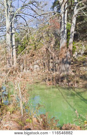 Small Green River At Hamilton Pool