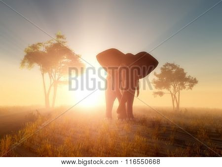 Figure of an elephant in the sun.