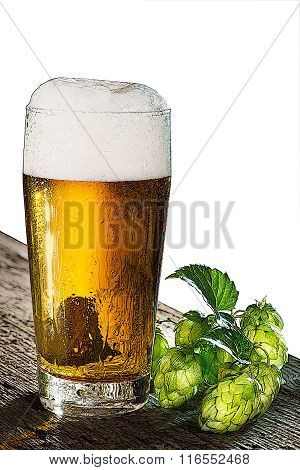 Illustration Of Beer And Hops