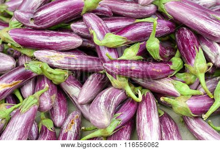 Heap of eggplants