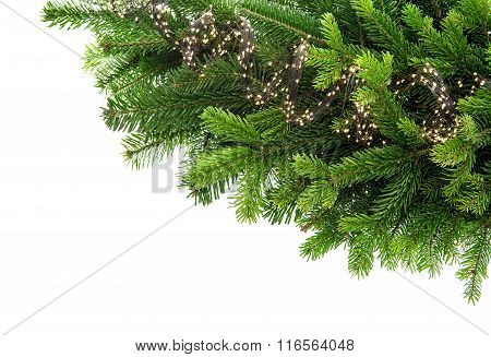 Fresh Spruce Sprigs With Lights Decoration