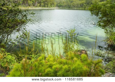 Fresh Water Lake
