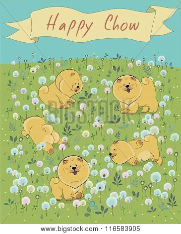 Happy Puppies On The Blossoming Field