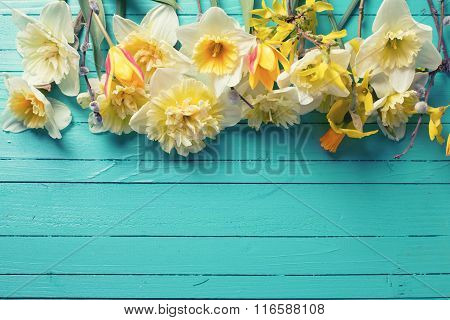 Border From Fresh  Spring Yellow Narcissus, Tulips  Flowers  On Green Painted Wooden Planks.