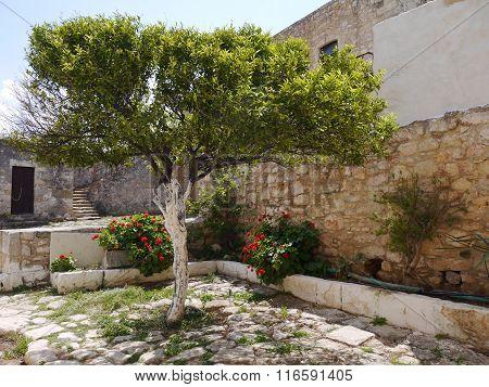 Cosy Greek Yard