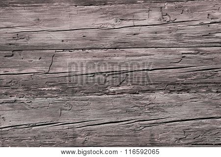 Wooden Background With Wormholes