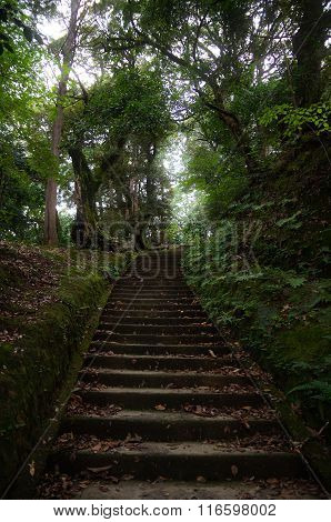Old Japanese Path Inside A Forest