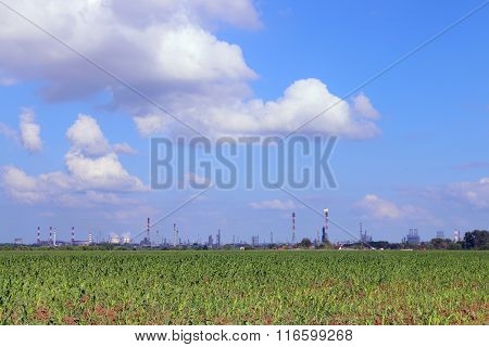 Green Field And Oil Refinery With Pipes And Gas Torch At Summer Sunny Day